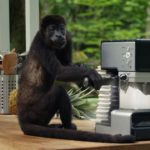 What's the IKEA monkey advert song and who sings it?